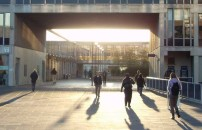 entree-universite-reforme
